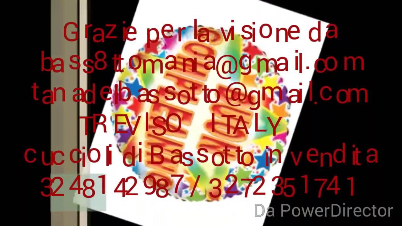 Buon Compleanno Da Vasco Rossi Youtube