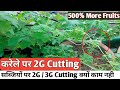 कर ल पर 3G Cutting क स कर mp3