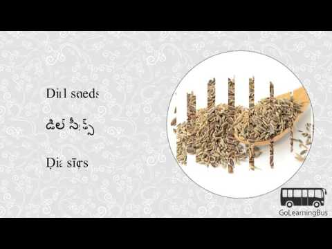 Learn Telugu Visual Dictionary Herbs And Spices Via Videos By Golearningbus 3d Youtube