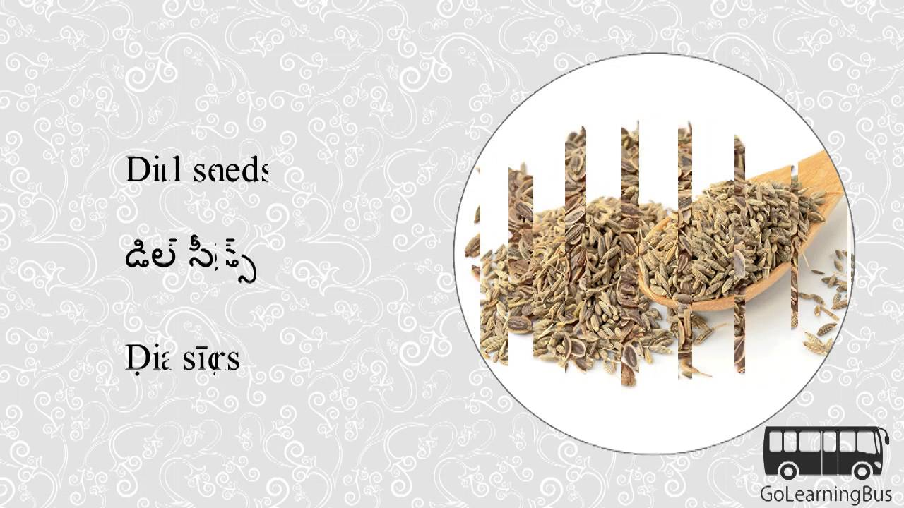 Learn Telugu Visual Dictionary - Herbs and Spices via Videos by  GoLearningBus(3D)
