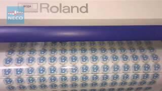 Печать наклеек, стикеров в Краснодаре(, 2017-11-30T09:01:38.000Z)
