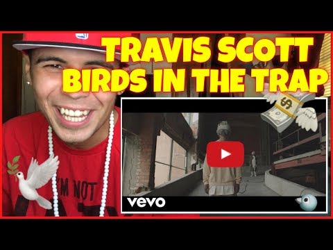 Travis Scott - Birds In The Trap | Reaction Therapy