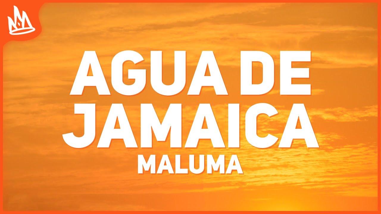 Maluma Agua De Jamaica Letra Youtube