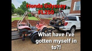 Honda Odyssey FL250 Restoŗation Part 1