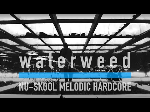 waterweed - Beyond the ocean (Music Video)