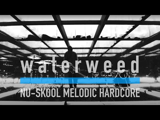 waterweed - Beyond the ocean (Music Video)