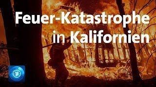 Wäldbrände in Kalifornien erreichen historische Dimension