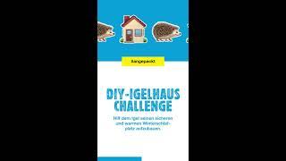 Wer Baut Das Bessere Igelhaus? (Teil 2) | DIY | JUMBO