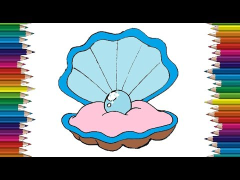 How to Draw an Oyster with a pearl | Oyster drawing and coloring