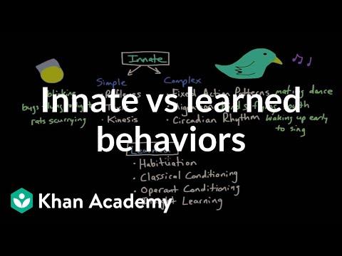 Operant conditioning: Innate vs learned behaviors | Behavior | MCAT | Khan Academy