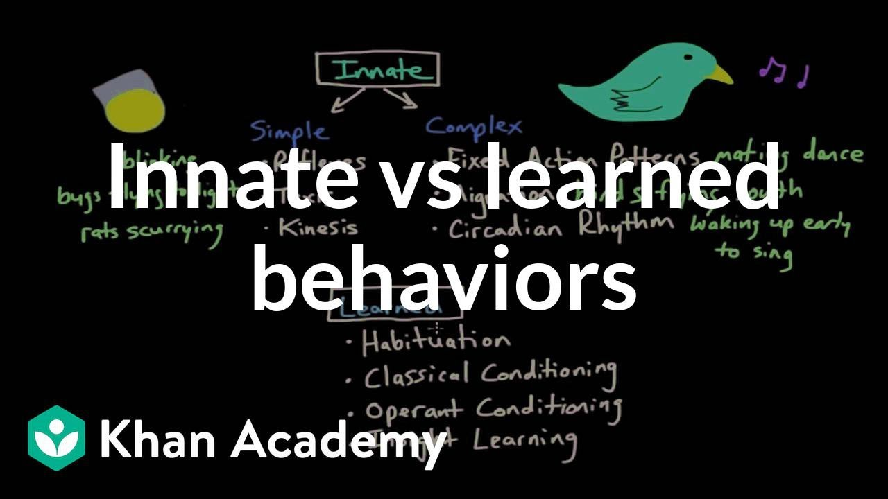 Operant Conditioning Innate Vs Learned Behaviors Behavior Mcat