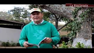 DETECTIVE HÍPICO Jonathan Perozo Hípicos Enlinea SÁBADO 16/02 DOMINGO 17/02