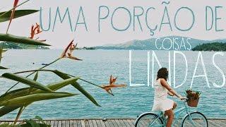 ZIGNAL - UMA PORÇÃO DE COISAS LINDAS (CLIPE OFICIAL) thumbnail