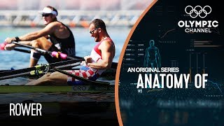 Anatomy of a Rower: Does Damir Martin have the strongest legs of any Olympic athlete?