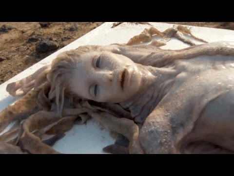 Thumbnail: 10 Mysterious Washed Up CREATURES