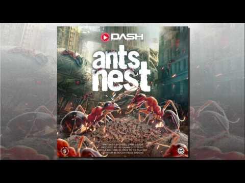 "Dash - Ants Nest ""2017 Soca"""