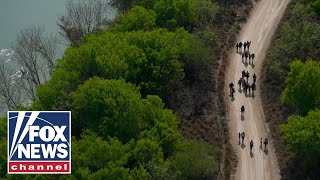 Border crisis is hurting American communities: Karl Rove