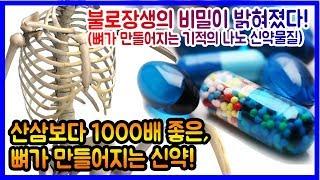 불로장생의 비밀이 밝혀졌다! 산삼 1000배, 뼈가 만들어지는 신약! (칼슘(Ca) 효능의 원리!, 뼈가 만들어지는 기적의 나노 신약물질!)