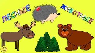 Лесные животные для детей. Изучение животных. Развивающие мультфильмы для детей