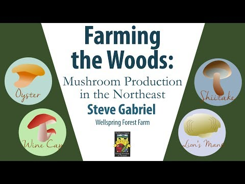 Farming the Woods: Mushroom Production in the Northeast | Steve Gabriel