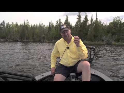Fish Ed 045 Early Summer Panfish