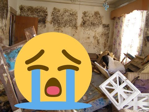 My tenants trashed my house worse than you can imagine