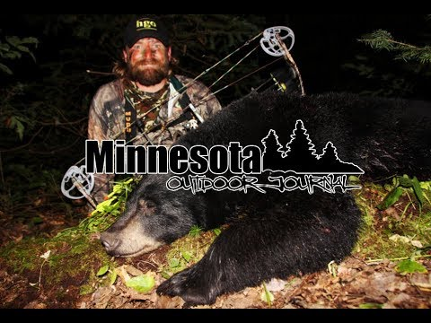 2017 Minnesota Black Bear Hunt