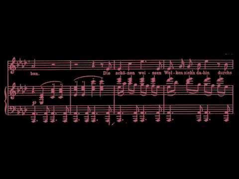 Johannes Brahms: Feldeinsamkeit