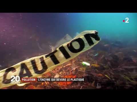 Pollution une enzyme qui dévore le plastique a été découvert
