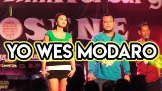 rindi antika yo wes modaro cover lagune aftershine live mayungan muda mudi morosene bantul bergetar
