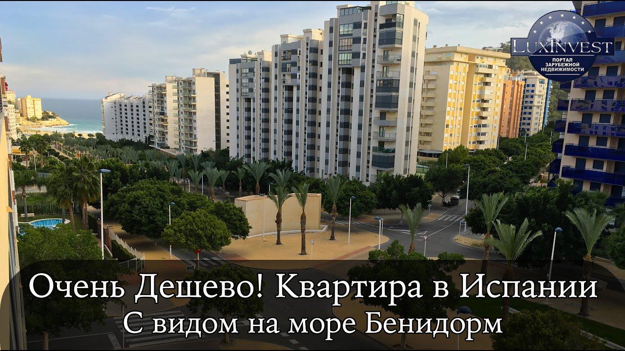 На расстоянии 5–20 км от моря за те же деньги можно купить жилье намного большей площади и лучшего качества. Купить недвижимость в испании может любой человек с достаточным уровнем дохода, а также юрлицо. Покупка будет оформлена вне зависимости от того, есть ли у покупателя испанское.