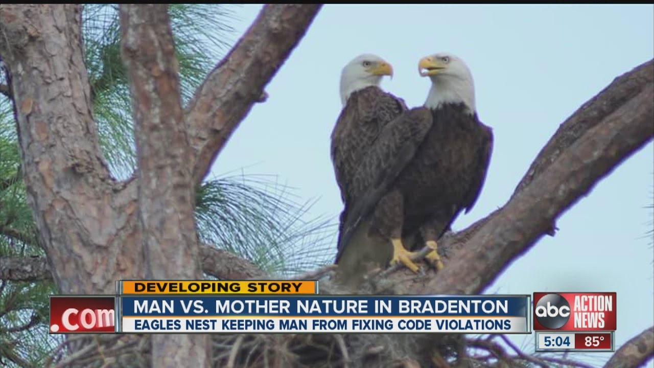 Man vs. mother nature in Bradenton - YouTube