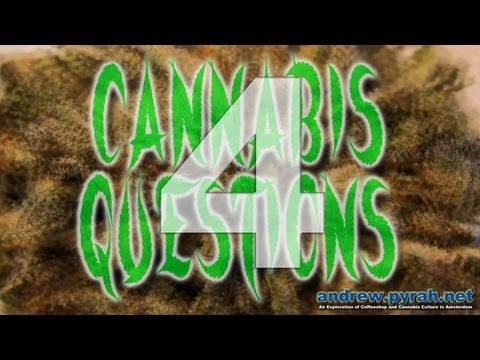 4 What Is Autoflowering Cannabis ? #CannabisQuestions