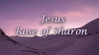 찬송가 영어로 배우기[24] 샤론의 꽃 예수 Jesus…