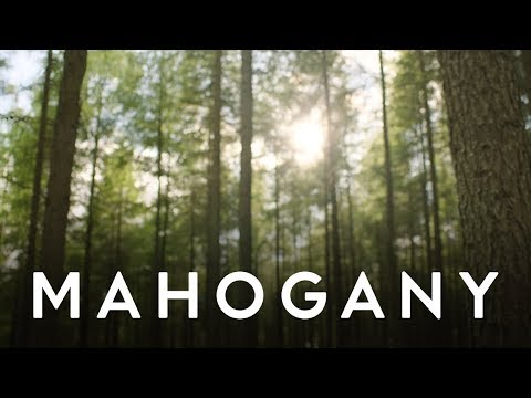 Josh Garrels - Born Again | Mahogany Music Club
