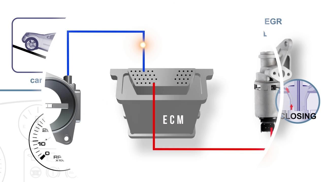 EGR Position Signal Voltage High