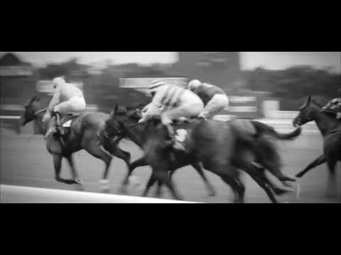 The Property Race Day - Calling All Jockeys