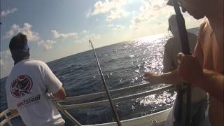 Tuna Popping with Black Hole 106N Surf Rod on BIG E, May 2012