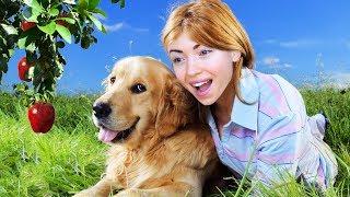 GETTING A DOG!! (Farm Together)