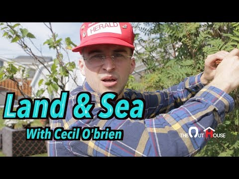 Cecil O'Brien: Land & Sea