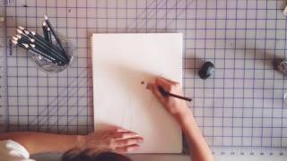 How to draw a Jamaican Tody