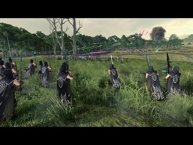 Истребление лесных эльфов - Total War: Warhammer 2 (Эшин)#10