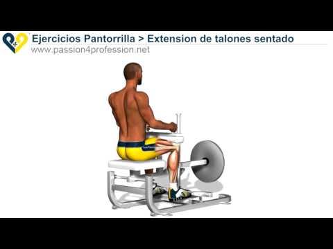 Ejercicios: Gemelos Soleo Gastrocnemio - YouTube