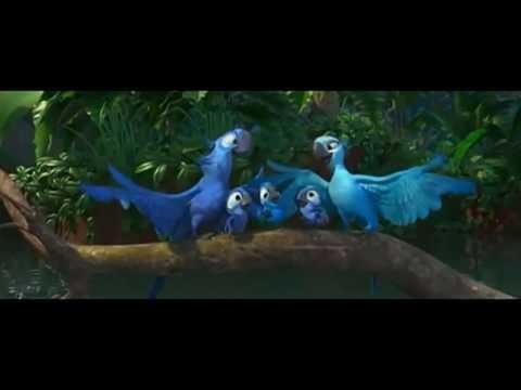 Rio Bird Dance Video In Oriya Song