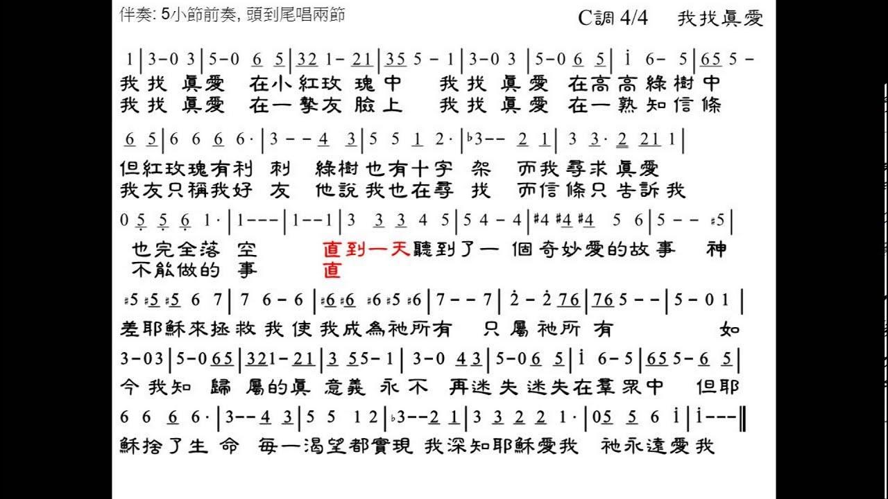 google translate 中文 版