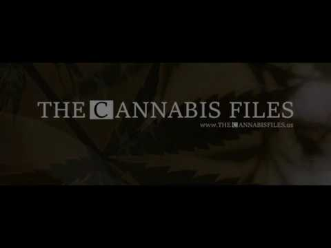 The Cannabis Files #002 feat Wendy Love Edge