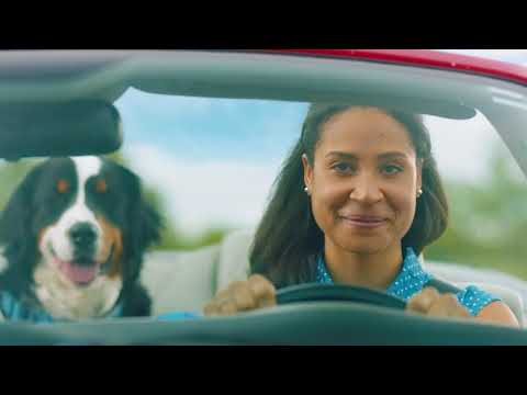 CAA MyPace™ - Don't leave your auto insurance running - duke 15
