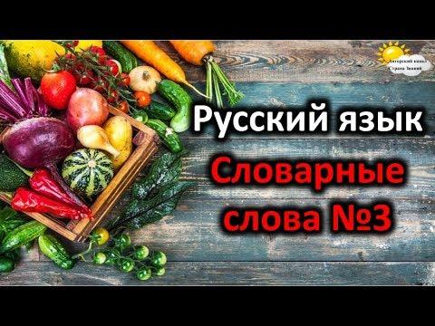 Русский язык. Словарные слова №3