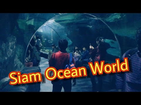 Sea Life Ocean World Bangkok 2018 !