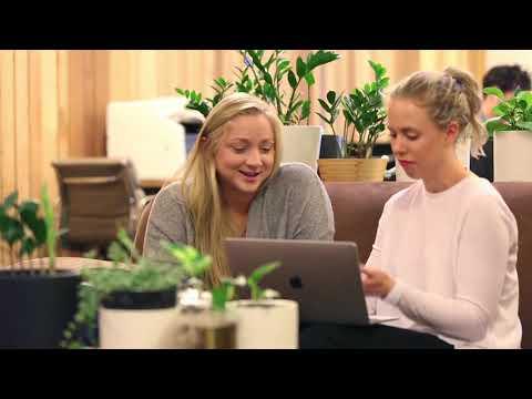 Internship in Australia - Marketing Testimonial - Alayne's Experience